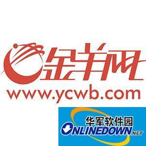 惠州巡察组工作揭秘:抽查公职人员电脑有无购物软件_金羊网新闻