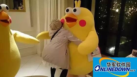 日本鹦鹉兄弟QQ微信GIF动图表情包大全下载(鹦鹉Poinkoポインコ兄弟)
