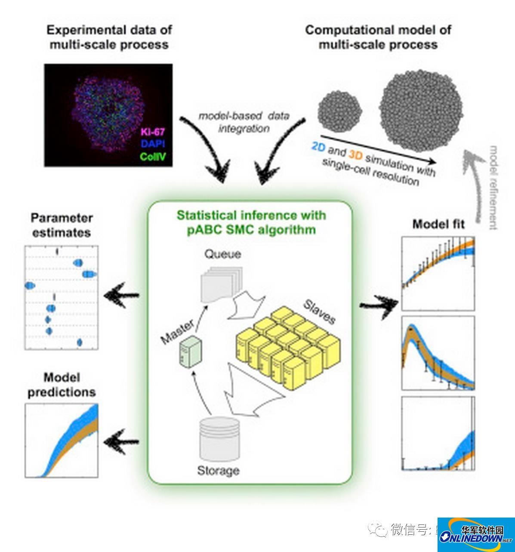 #梦幻超算##生物工程#超算分析细胞社会组织模型(Cell System 干货)中英对译V1.0