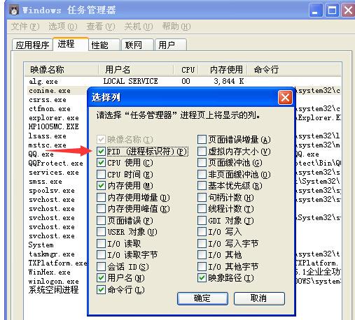 WinHex查找下载器真实下载链接方法教程