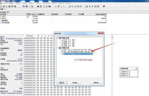 WinHex扫描磁盘文件删除的方法教程
