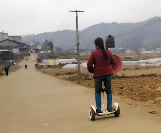农村大姐火了 骑平衡车扛锄头下地干活