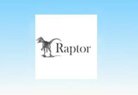 Raptor计算圆形面积的详细操作流程