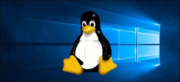 Win10第二代Linux子系统WSL2将随v2004正式版上线