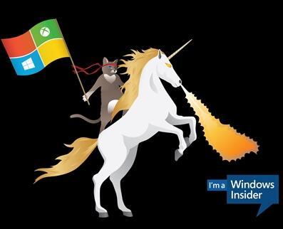 微软官方发布:Windows 10忍者猫壁纸全集