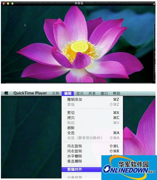 quicktime player怎么用 quicktime player下载使用教程3