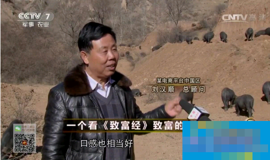 CCTV-7《致富经》报道互联网养殖平台乐农之家