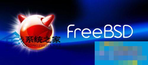 FreeBSD 8.2如何安装和配置Salt