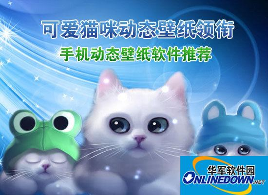 可爱猫咪动态壁纸领衔 手机动态壁纸软件推荐(全文)