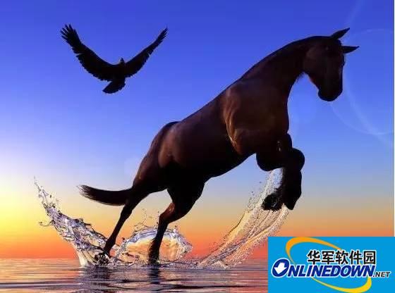 年年高考有黑马,高考君告诉你,高考黑马是怎样炼成的!