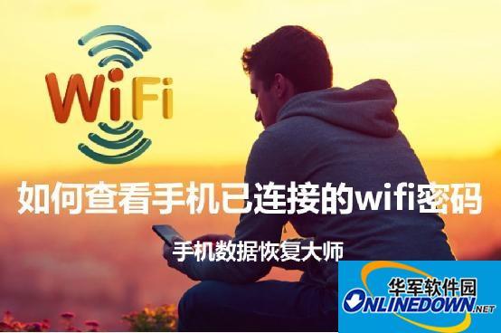 如何查看手机已连接的wifi密码?wifi密码查询器