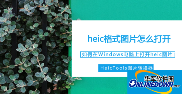 heic格式图片怎么打开?如何在Windows电脑上打开heic图片