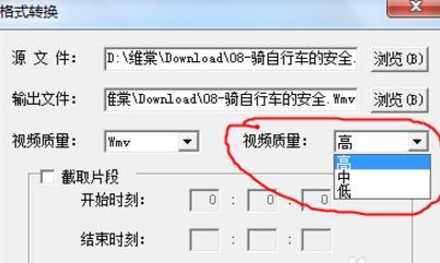 维棠FLV视频下载软件如何进行视频转换
