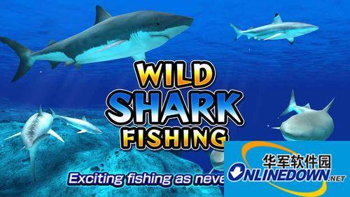 捕鱼手游《野生鲨鱼捕鱼》已上线