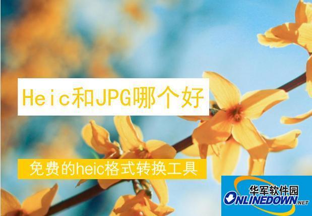 heic格式和JPEG格式的区别是什么?怎样在电脑上查看heic格式呢?