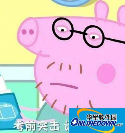 考前先看一集小猪佩奇表情包图片大全:考试加油、考的全会