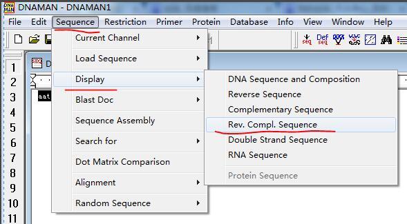 如何用DNAMAN软件得到反向互补的DNA序列