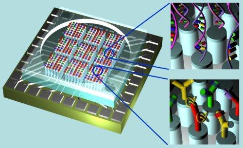芯片精灵使用方法截图