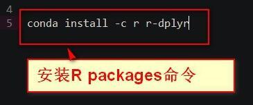 如何用anaconda安装r语言