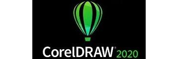 CorelDraw2020怎么导出图片-CorelDraw2020导出图片的方法