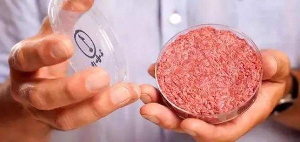 """汉堡王将全面开启""""人造肉""""时代 好吃更健康"""