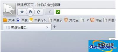 猎豹浏览器用户浏览历史记录怎么查?