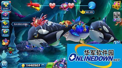 捕鱼达人3虎鲸怎么样?捕鱼达人3虎鲸属性介绍