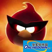 愤怒的小鸟太空版新增6大角色的详解