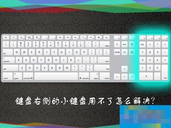 为什么数字键盘用不了?键盘右侧小键盘不能用怎么解决?