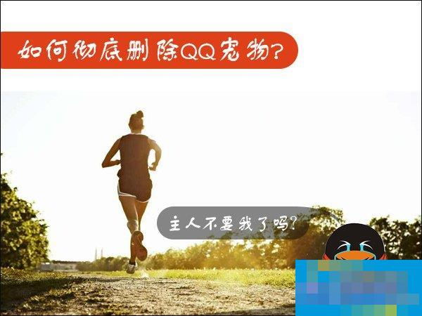 Win7如何卸载QQ宠物?关闭QQ宠物自动登录的方法